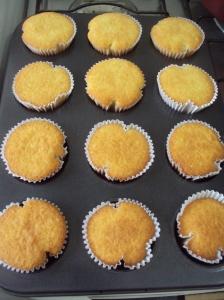 conchiglione e cupcake 010
