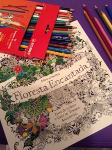 livro de colorir 001